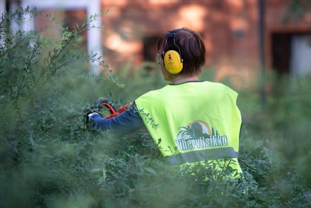 Puutarhuri huomioliivissään ja keltaiset kuulosuojaimet päässä leikkaamassa pensasta